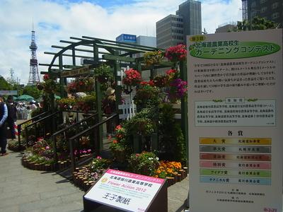 花フェスタ2012.JPG